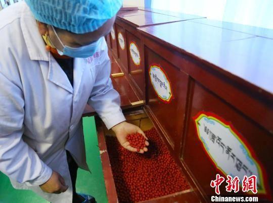 经现代制药规范和运用传统藏医秘方生产的藏药产品正不断地从藏区走向内地、走向世界。 高展 摄