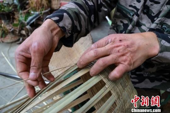 """竹编是个""""危险活"""",张君明的手上有很多伤口,右眼也被篾条划伤过,但他从未想过放弃。 李董 摄"""