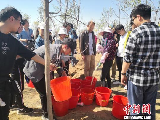 图为大学生志愿者开展义务植树。 杨娜 摄