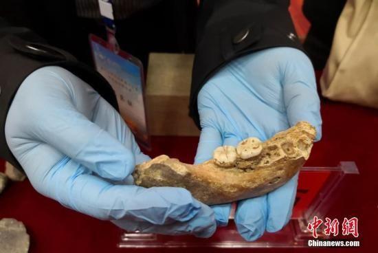 中国科学院院士陈发虎带领的兰州大学环境考古团队近日在一次会议上最新公布,夏河丹尼索瓦人发现地――甘肃省甘南州夏河县白石崖溶洞保存有丰富的旧石器文化遗存,包括大量石器和动物骨骼化石。