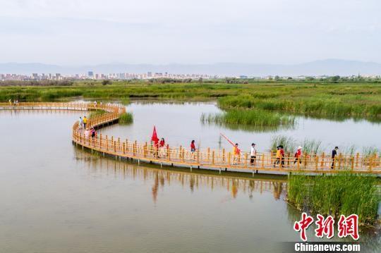 甘肃张掖万人穿越戈壁湿地 徒步12公里赏如画风光