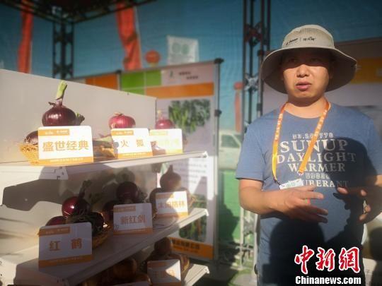 图为国内客商介绍洋葱新品种。 魏建军 摄