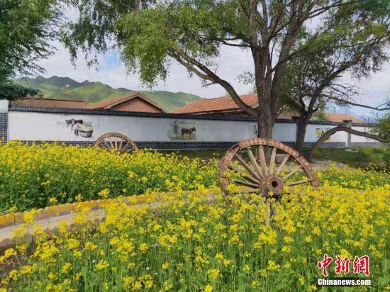 民乐县的村容村貌。(共青团民乐县委员会 供图 )