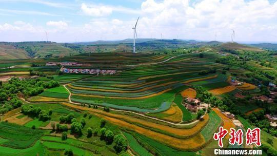 图为定西市安定区石泉乡,山梁上一座座风力发电机组和梯田里的各类农作物如同一条条彩色丝带缠绕在黄土地上。(资料图) 王金生 摄