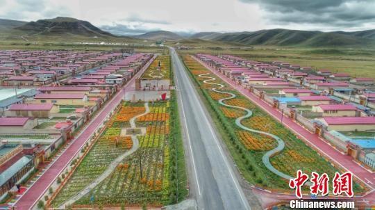图为航拍甘肃甘南具有环境友好、民俗文化等主题的藏寨。 任磊 摄