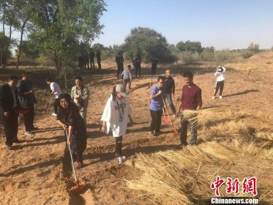 图为游客在八步沙林场开展压沙体验活动。甘肃省文旅厅供图