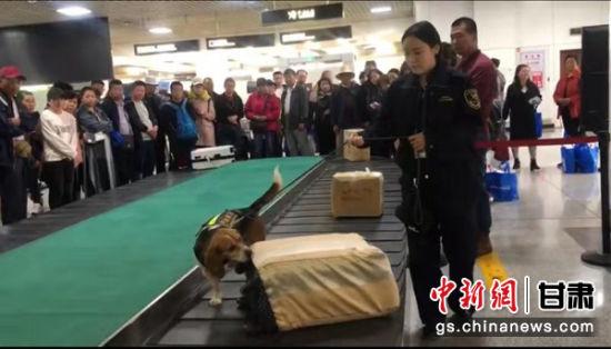 图为兰州中川机场海关工作人员现场查验入境旅客行李。(资料图)