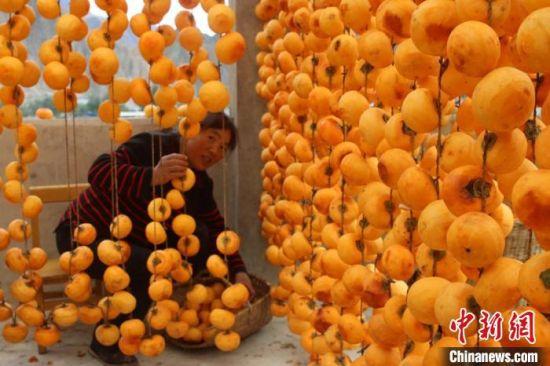 图为农民忙着晾晒柿饼。 王小勇 摄