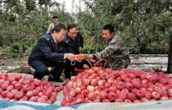 税务干部在樊天喜的果园里宣传涉农税收优惠政策。