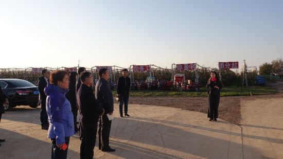 甘肃省科技厅组织专家组考察验收宁县省级农业