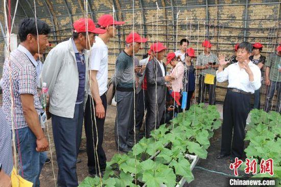 图为科技特派员(右一)为农户讲解种植技术。(资料图) 钟欣 摄