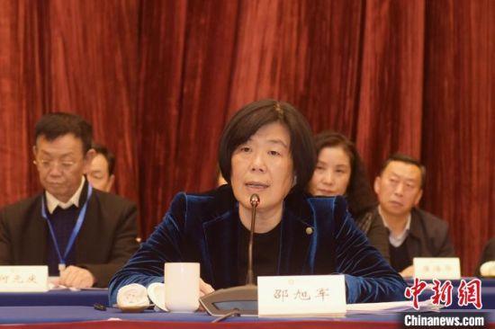 图为中国侨联副主席邵旭军讲话。 韦德占 摄