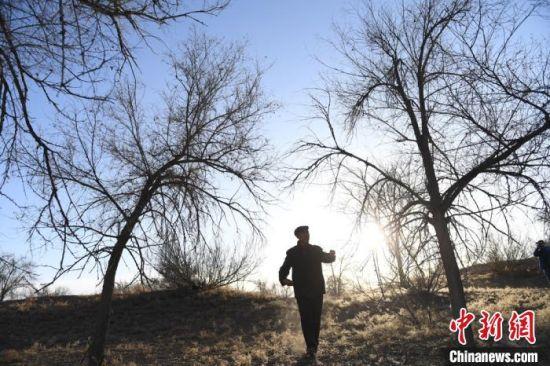 """甘肃武威市古浪八步沙林场治沙""""六老汉""""三代人38年来,始终拼搏奉献、科学治沙,书写从""""沙逼人退""""到""""人进沙退""""的绿色篇章。图为""""六老汉""""之一于2017年1月照。(资料图) 钟欣 摄"""