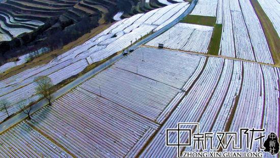 图为崆峒区寨河乡闫湾村旱作农业区域。王亮亮 摄