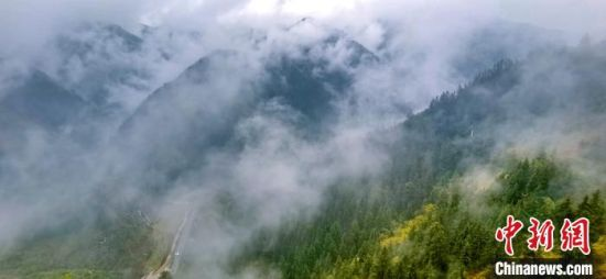 图为云雾缭绕的兴隆山。 张学江 摄