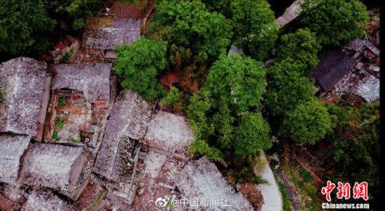 图为航拍的百年古村落。
