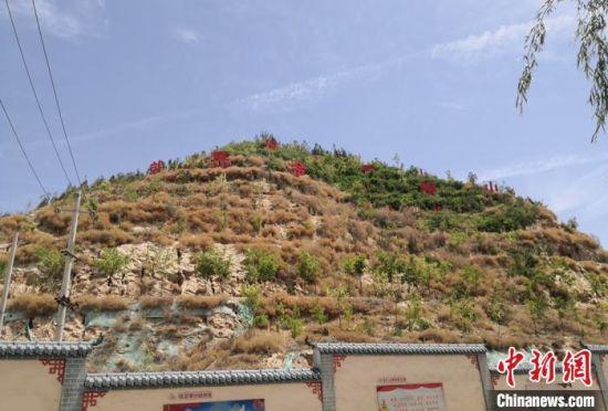 图为金崖镇经过四年努力提高裸露山体植被绿化率。 刘玉桃 摄