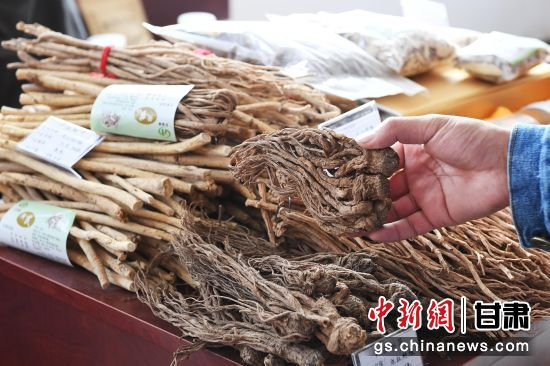 图为2018年10月甘肃民乐中药材博览会上的中药材。(资料图)杨艳敏 摄