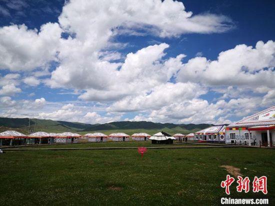 6月下旬,尕秀村帐篷城草原风光秀美。 冯志军 摄
