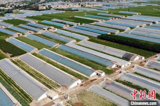 2020年6月,甘肃凉州,年产3万吨西瓜供应(北上广深)基地航拍图。 高展 摄