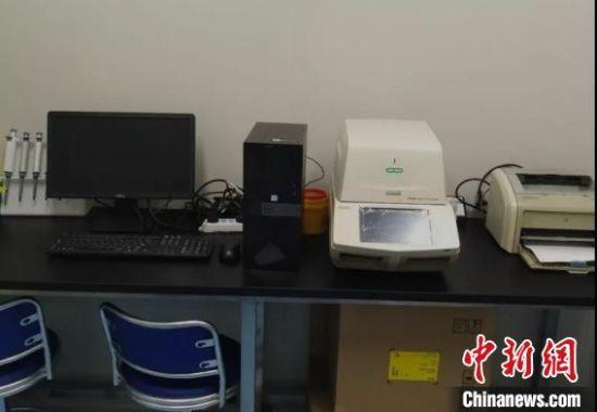 """图为""""方舱""""核酸检测实验室内部。武威市委宣传部供图"""