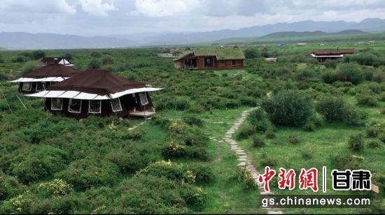 7月上旬,甘肃甘南藏族自治州夏河县桑科草原旅游营地。张婧 摄