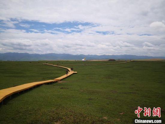 图为2020年6月中下旬,甘南藏区草原风光秀美。(资料图) 冯志军 摄