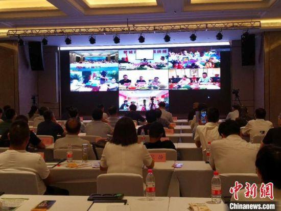 7月31日下午,2020年甘肃省特色农产品集中上市季线上线下产销对接活动举办。 刘薛梅 摄