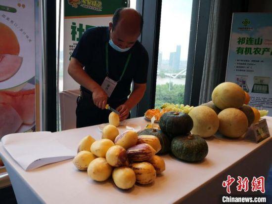 图为甘肃的农特产品瓜果。 刘薛梅 摄