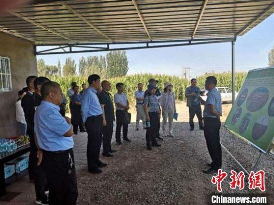 8月19日至20日,水利部节约用水促进中心对甘肃张掖市用水定额执行情况进行全面检查。甘肃省水利厅供图