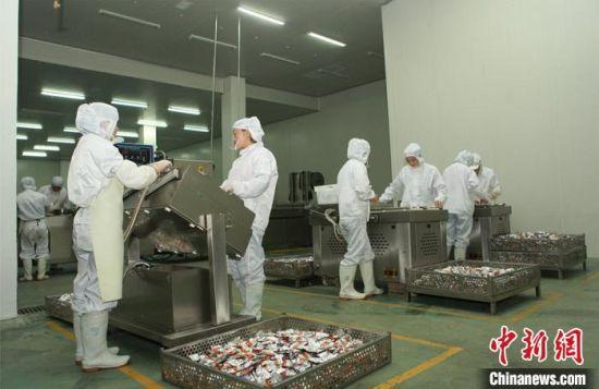 图为牦牛肉加工。(资料图)安多集团供图