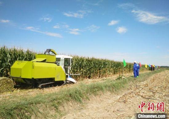 图为饲草收获装备在田间作业。(资料图)受访人供图