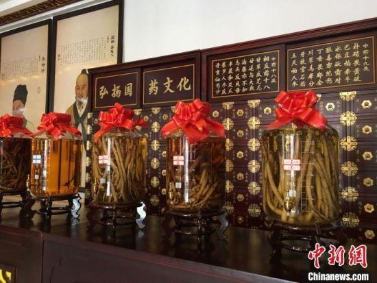 2020年6月,甘肃省定西市渭源县田家河乡元古堆村一家中药材生产加工企业的药材展示。 (资料图) 张婧 摄