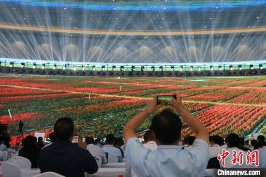 """2020年8月28日,第三届中国(甘肃)中医药产业博览会在""""千年药乡""""甘肃省定西市陇西县开幕,本次大会采取线上为主,线下相结合的方式召开。图为民众线上感受药材种植。(资料图) 张婧 摄"""