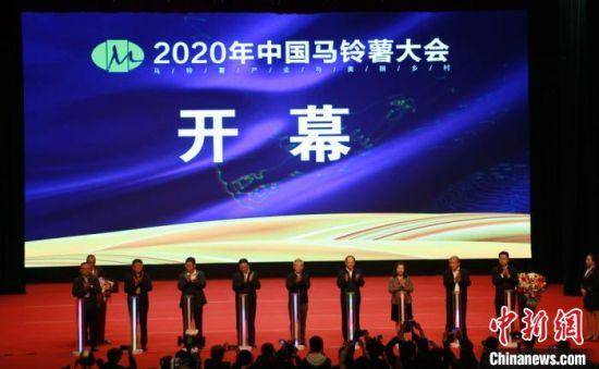 图为2020年中国马铃薯大会启幕现场。 张婧 摄