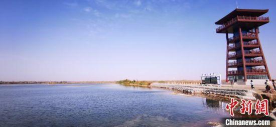 图为嘉峪关草湖国家湿地公园。(资料图) 魏建军 摄
