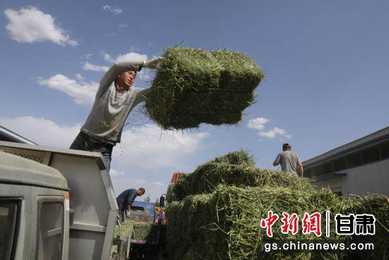 群众出售饲草。 李文 摄