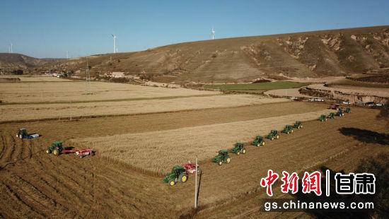 图为环县大燕麦草机械化收割现场。(资料图) 陈建宗 摄