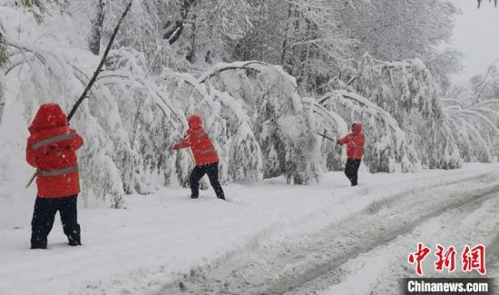 图为临夏公路局各养护单位工作人员清理树枝积雪及折断树枝。 杨元鹏 摄