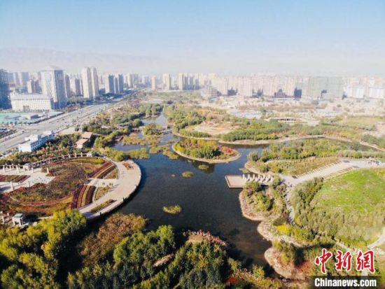 10月中下旬,中新网记者走访位于甘肃省武威市凉州区的海藏湖湿地公园,了解当地生态治理工程。 高莹 摄