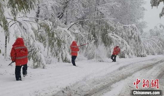 10月27日,甘肃临夏州境内普降雨夹雪,局部地区积雪深度达26厘米,多条国省干线公路出现不同程度的冰雪灾害,影响过往车辆的安全通行。图为临夏公路局各养护单位工作人员清理树枝积雪及折断树枝。杨元鹏 摄
