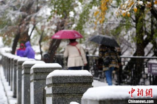 图为游客雪中赏景。 吴希会 摄
