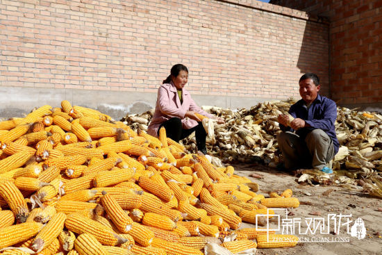 左涛和妻子剥玉米。