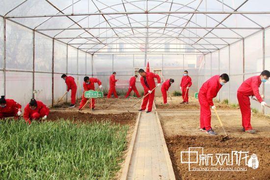 立春后,国家管网西南管道公司临洮作业区对蔬菜大棚进行翻地耕种。
