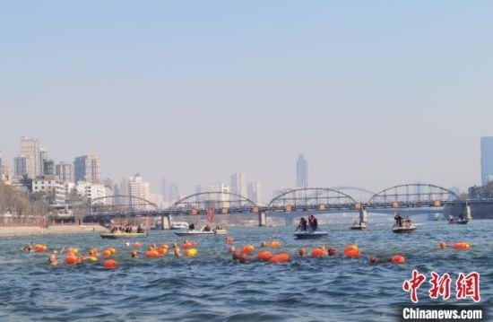 """图为冬泳健儿进行""""横渡黄河""""冬泳表演共庆新年。 崔琳 摄"""