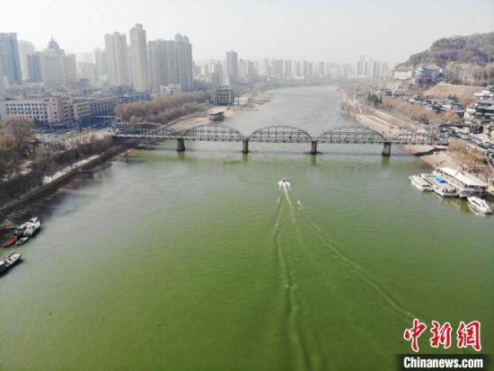 """近日,黄河兰州段,河水清澈,众多候鸟嬉戏觅食;从高空俯视,在阳光的作用下,黄河更是呈现出""""翠绿""""之色。 杨艳敏 摄"""