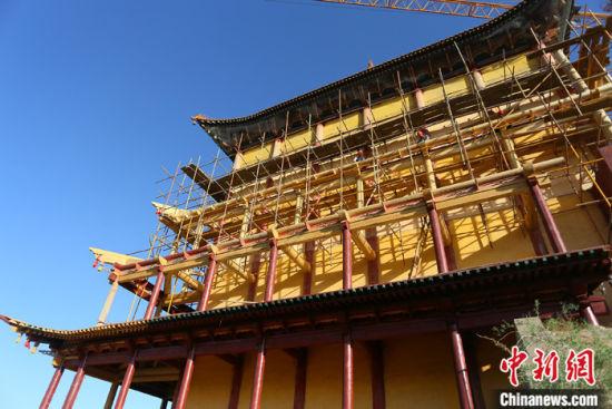 图为5月上旬,甘肃山丹县大佛寺内,正在修缮中的古建筑大雄宝殿。 中新社记者 高展 摄
