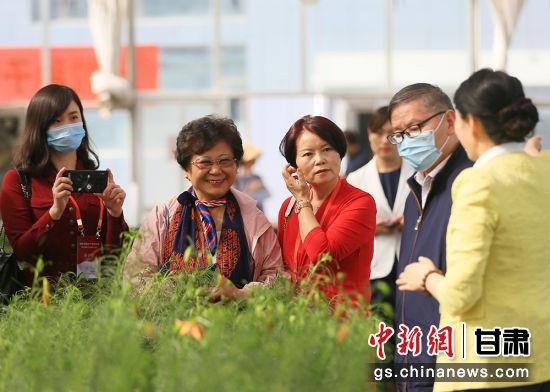 1 爽口源股份董事长吕斐斌向华文媒体代表们介绍兰州百合。