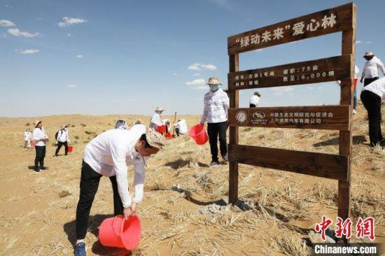 """图为志愿者在沙漠压沙。 """"绿动未来""""供图"""