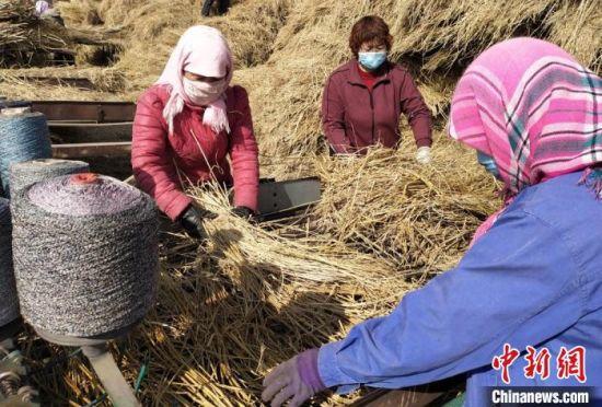图为王爱玲(右二)和工人编织草帘。(资料图) 受访者供图
